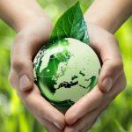 1.36亿!光大环境中标广西玉林市餐厨垃圾无害化处置项目特许经营